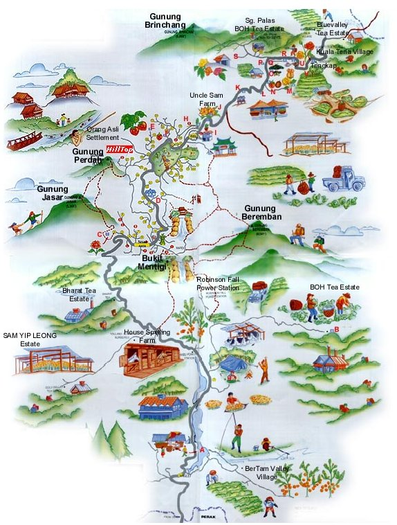 cameron highlands map